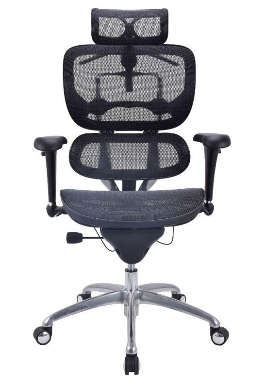 Кресло ALS Ergohuman Standart с Черной сеткой